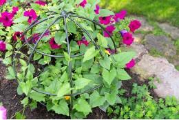 """Опора для вьющихся растений """"Сфера"""" малая"""